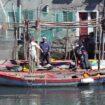Chioggia-pescatori